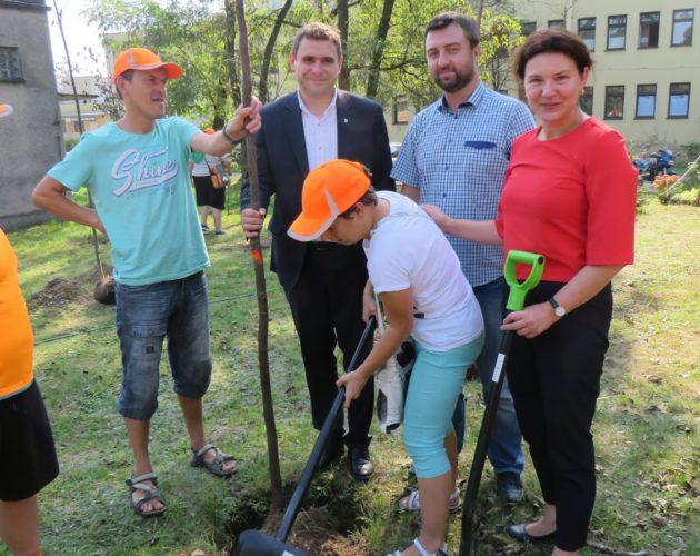 Zdjęcie wyróżnione wpisu - Wokół szpitala znów będzie zielono!