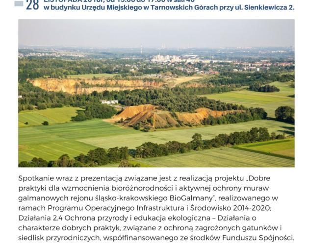Zdjęcie wyróżnione wpisu - Bioróżnorodność na tarnogórskiej hałdzie