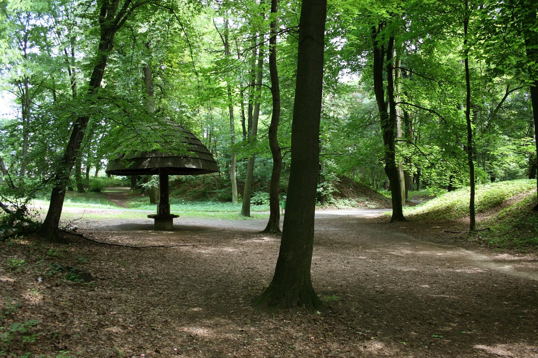 Park Miejski w grzybkiem