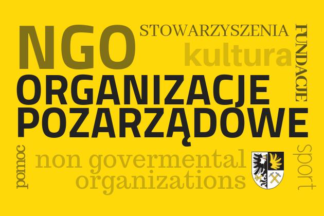 NGO - Organizacje pozarządowe - infografika
