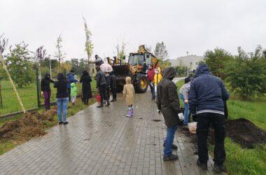 Grupa ludzi sadząca drzewa - Tarnogórskie Święto Drzewa