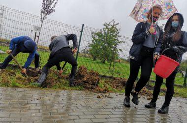 Młodzież sadząca drzewa