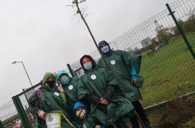 Grupa osób w przeciwdeszczowych płaszczach po zasadzeniu drzewa