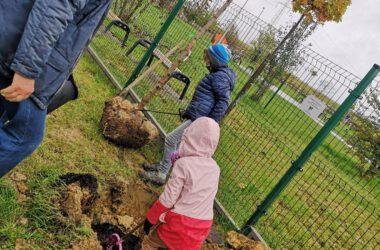Dzieci sadzące drzewo