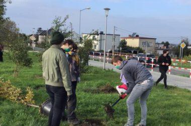 Sadzenie drzewa - grupa dzieci