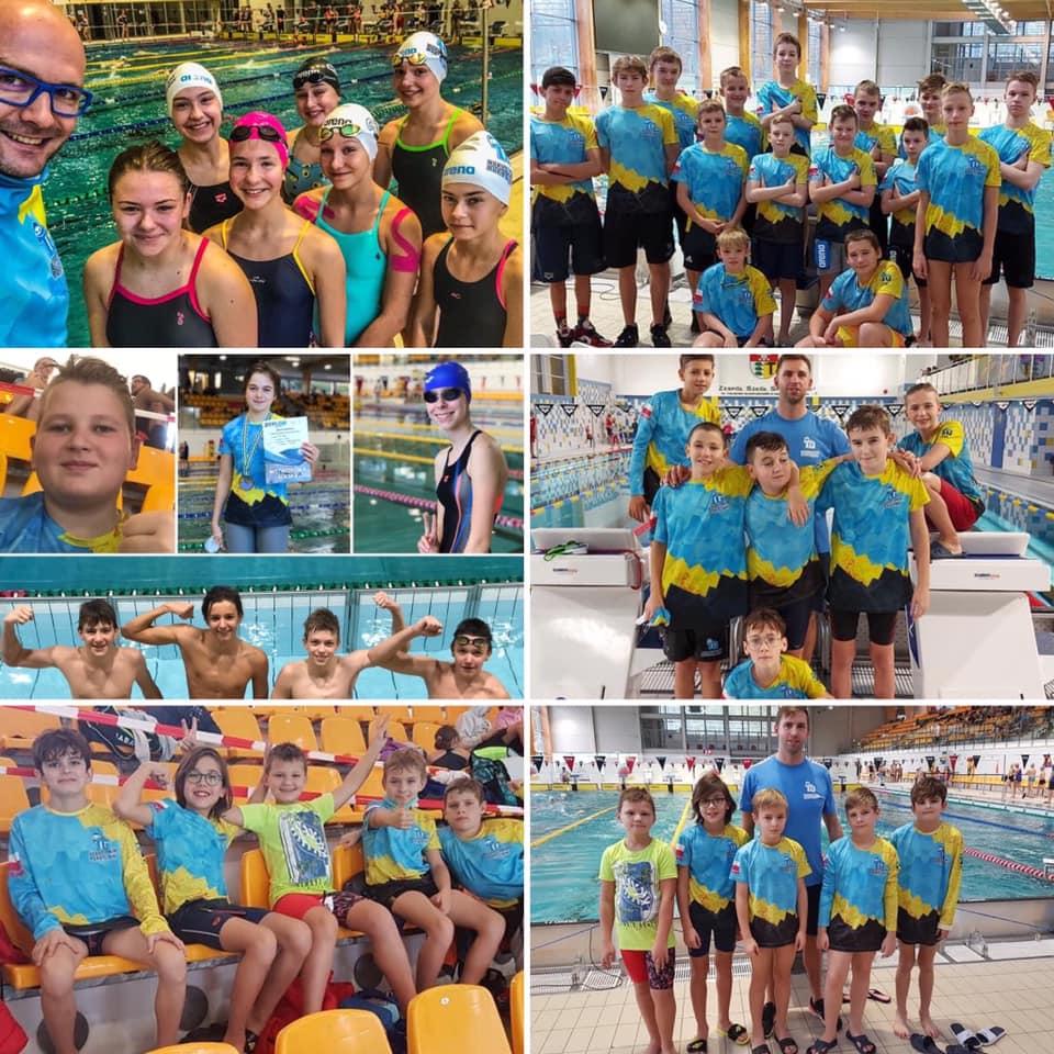 Mistrzostwa Śląska w pływaniu - kolaż zdjęć uczestników zawodów. MKS Park Wodny
