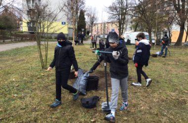 Zielone Płuca Miasta - Strzybnica - Uczestnicy akcji sadzą drzewka