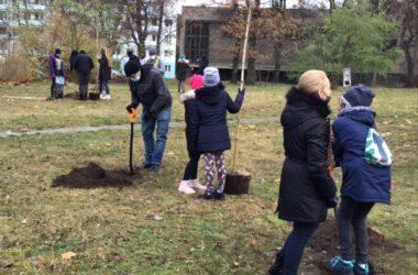 Zielone Płuca Miasta - Strzybnica - dzieci sadzące drzewka