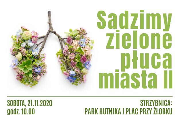 Sadzimy zielone płuca miasta - 21.11.2020 godz. 10 Strzybnica, park Hutnika - infografika