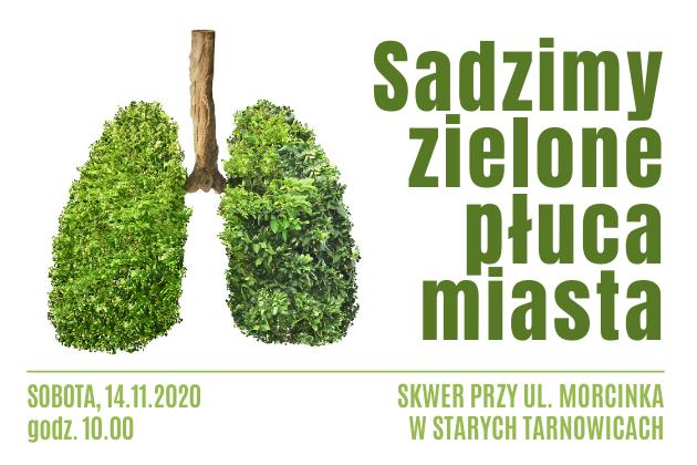 Sadzimy zieloie płuca miasta Sobota 12.11.2020 od godziny 10.00 Skwer przy ul Morcinka w Starych Tarnowicach