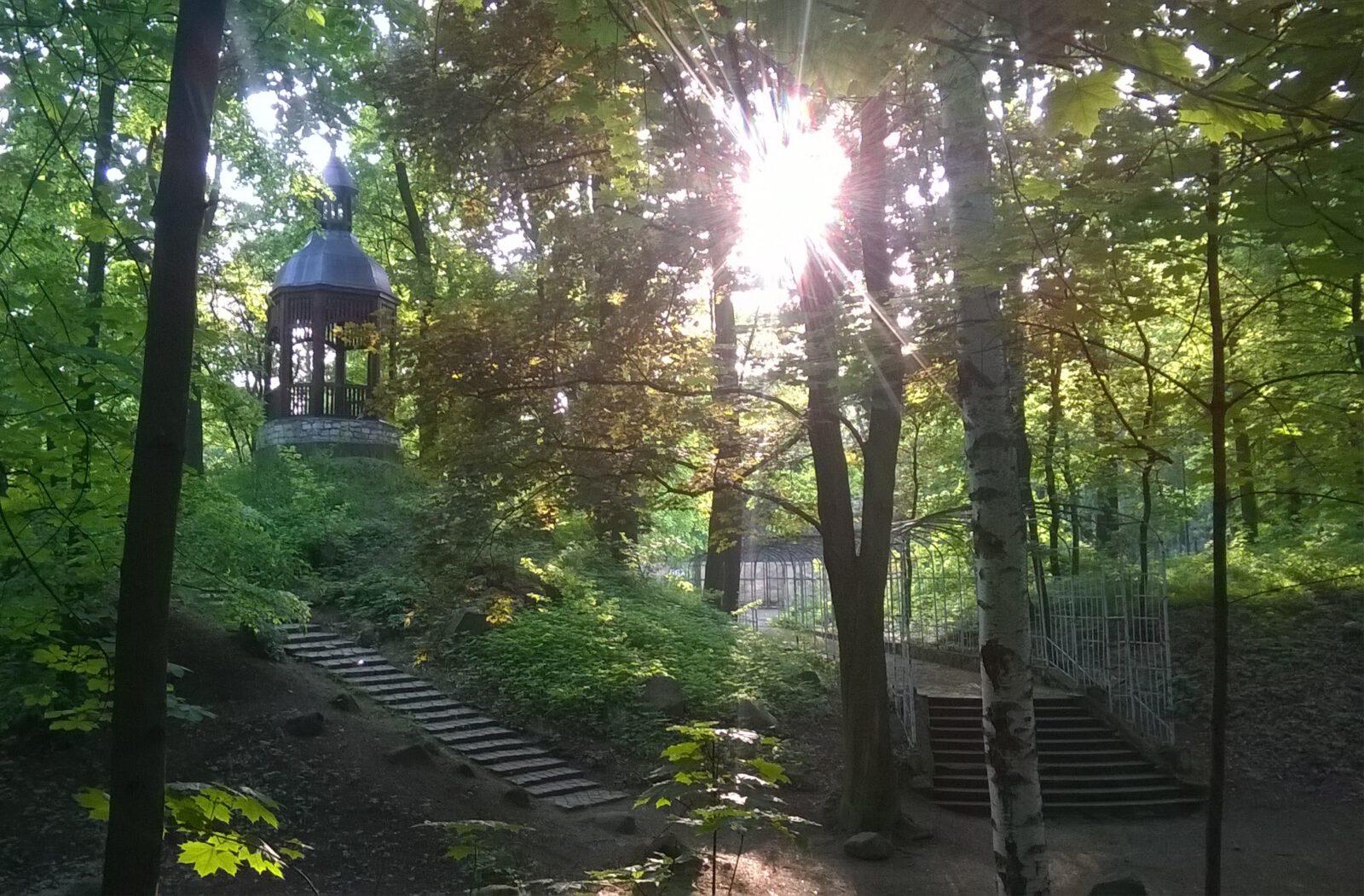 Tarnogórski Park Miejski - widok na wieżę