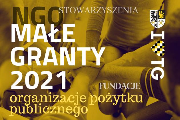 Małe Granty 2021 - infografika