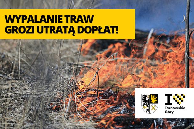 Wypalanie traw grozi utratą dopłat - inforgafika