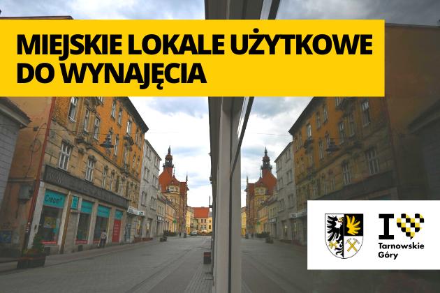 Lustrzane odbicie kamienic na ulicy Krakowskiej. W oddali Ratusz.