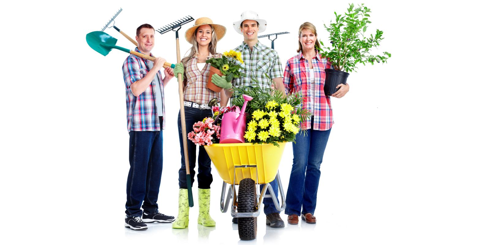Grupa osób zajmująca się ogrodnictwem - ilustracja