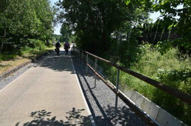 Grupa rowerzystów na ścieżce rowerowej wśród bujnej zieleni